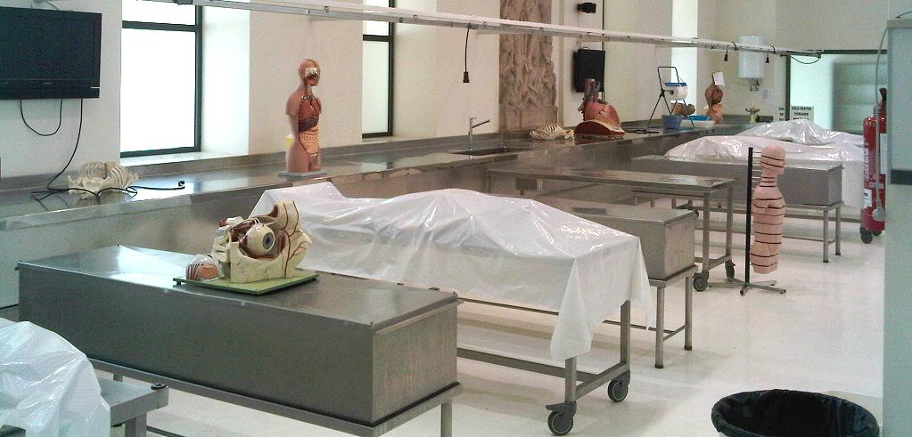 Corso in anatomia su cadavere per osteopati-iscriviti