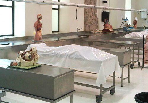 corso anatomia su cadavere - TCIO Istituto di Osteopatia Milano