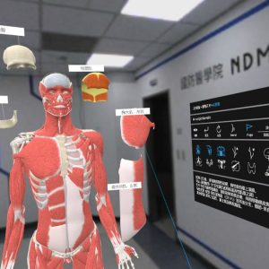 Anatomia VR